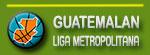 Liga Metropolitana logo