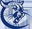 Collin CC logo