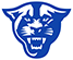 Georgia St. logo