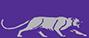 Ky Wesleyan logo