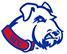 St.Francis, NY logo