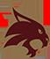 Texas St. logo