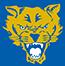 Ft.Valley St. logo