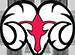 Winston Salem logo